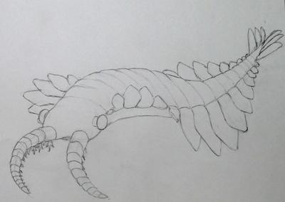 アノマロカリス02.JPG