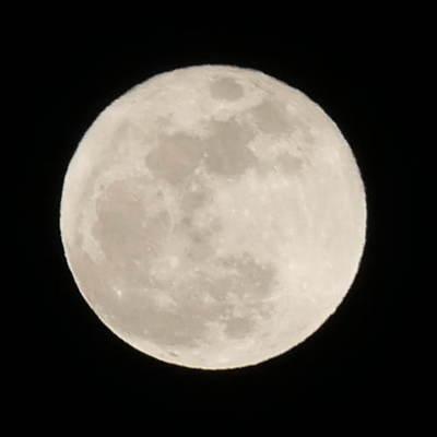 満月(月食の1か月前).JPG