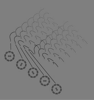 繊毛の回転.jpg