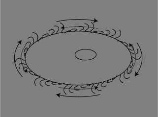 繊毛の回転2.jpg