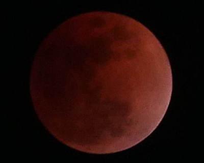 赤い満月.jpg